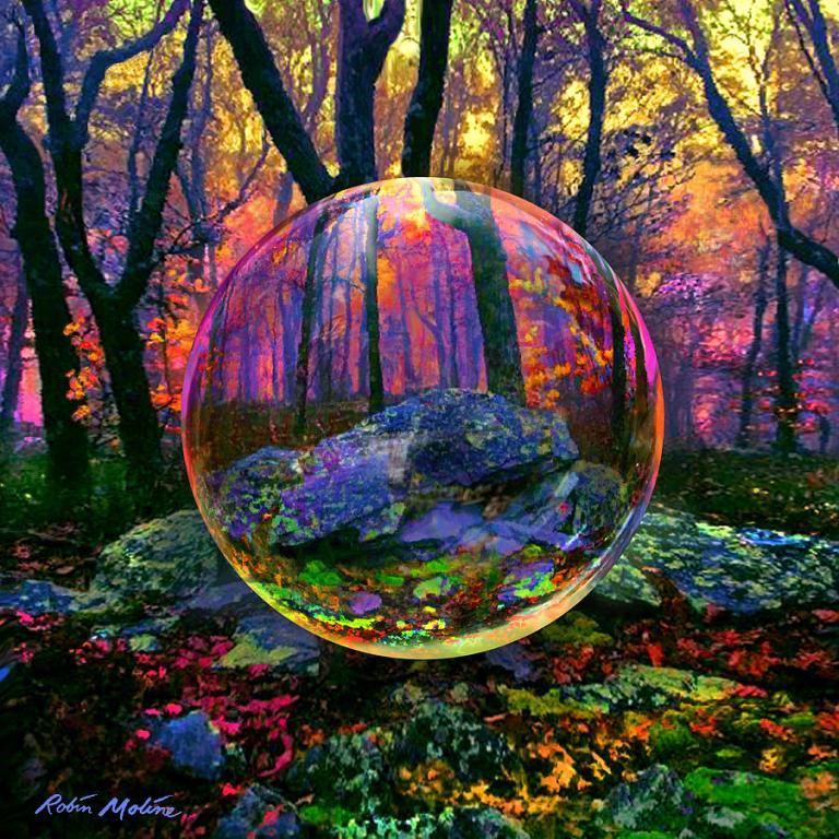 https://images.fineartamerica.com/images-medium-large-5/enchanted-forest-robin-moline.jpg